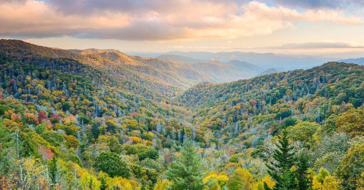 Tennessee Cabin Rentals from $37 - HomeToGo