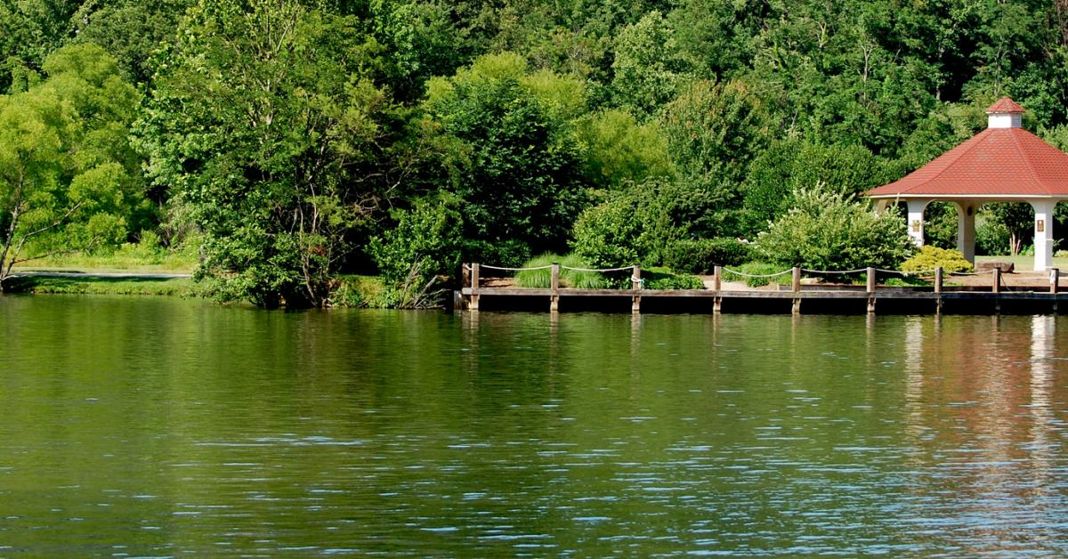 Lake Lure Cabin Rentals from $79 - HomeToGo