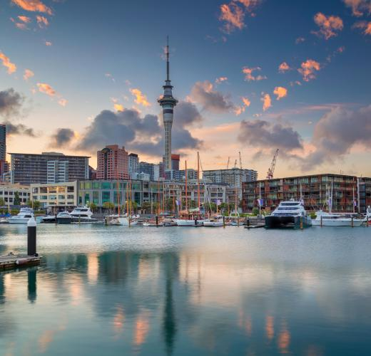 Find holiday homes & accommodation in Auckland from $28!