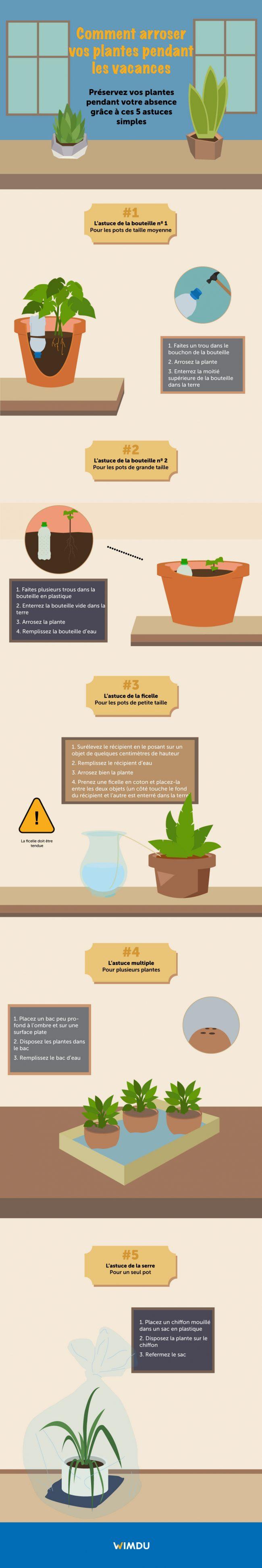 Pot Plastique Grande Taille comment arroser vos plantes pendant les vacances